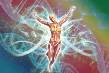 Biology Internal Assessment Ideas Bio IA Topics